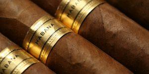 Cigar Stock
