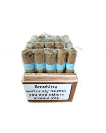 Chinchalero Sportivo Box of 25 Cigars