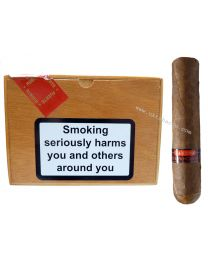 Chinchalero Fuerte Picadillo Box of 24 Cigars