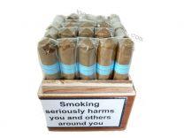 Chinchalero Sportivo Box of 25 Cigars