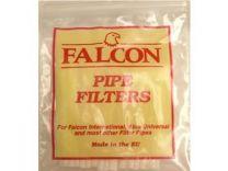 Falcon pipe filters 10s